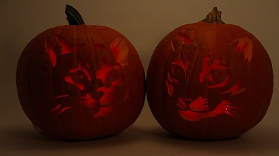 Ustream-Rebroadcast-Carved-PumpkinsIMG_2878-1280x720px
